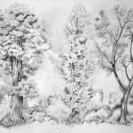 drzewa_praca wykonana podczas kuru rysunku