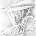 nożyczki - praca wykonana przez uczestnika Rocznego Kursu Rysunku