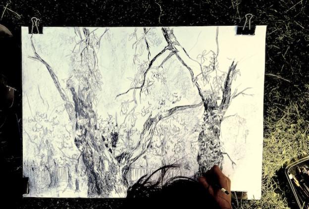 Ani dnia bez kreski, czyli o najskuteczniejszym sposobie nauki rysunku oraz porady jak powinien wyglądać Twój kurs rysunku